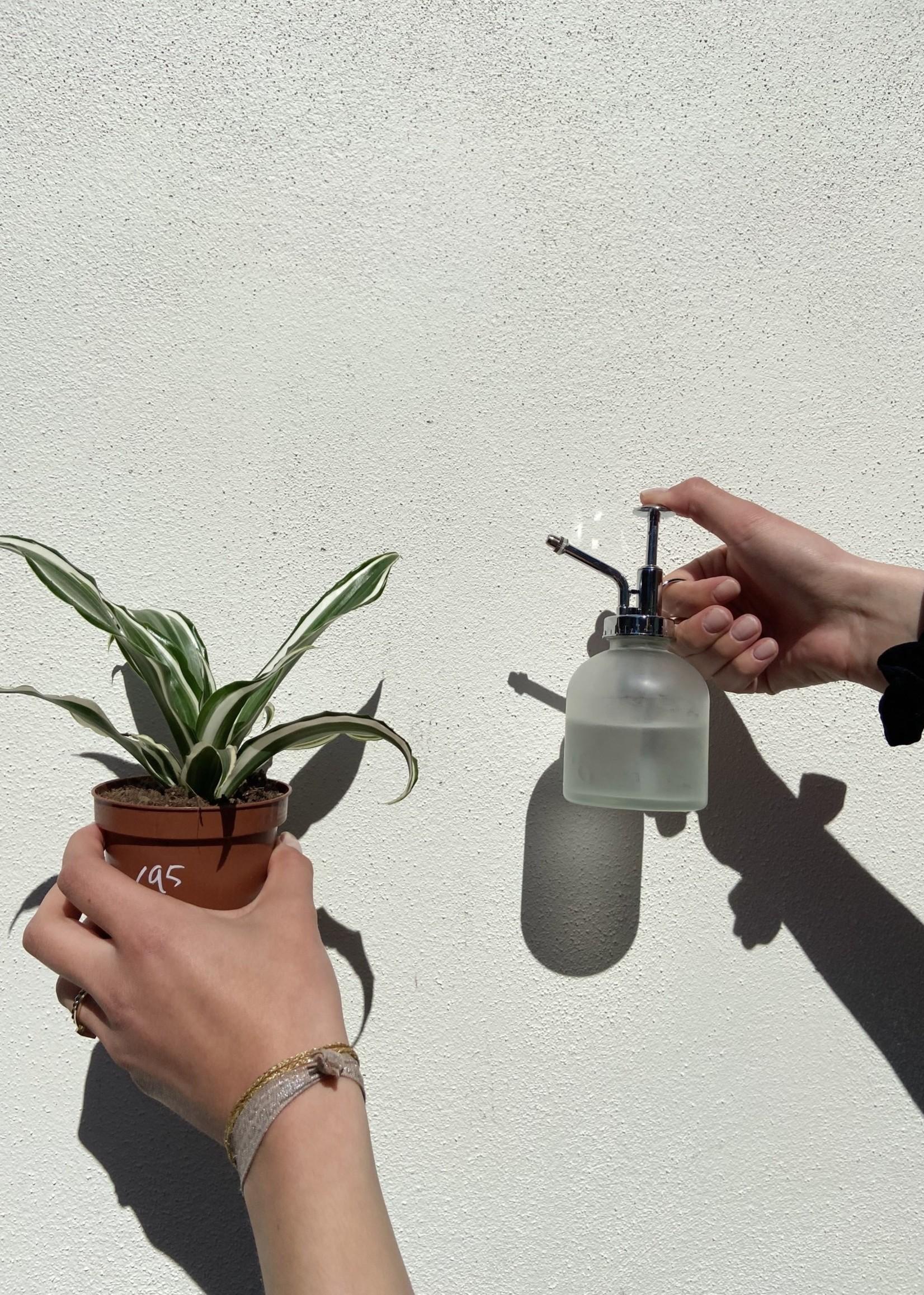 Esschert Design Plantensproeier melk glas