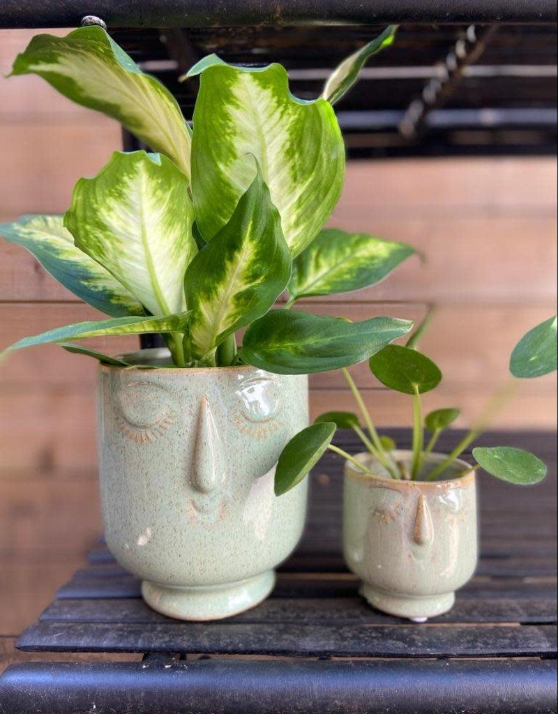 MICA Plant pot GEZICHTJE groen 13cm hoog
