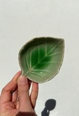 Asiatides Schaal in de vorm van een blad Groen 9 cm