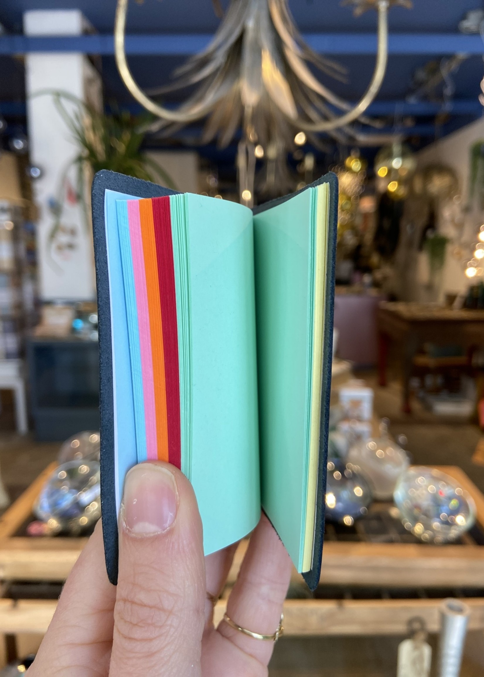 ARK colour design Notitieboekje borsten ZWART
