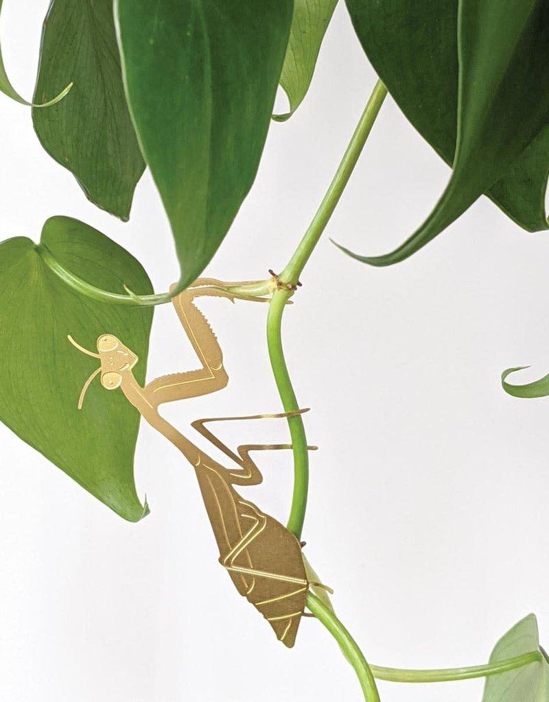 A.S Plant Animal BIDSPRINKHAAN