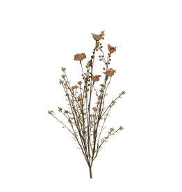 MICA Zijden bloemen DROOG boeket KLAPROOS bruin