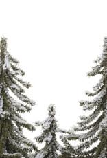 Heaven sends BOOMPJES  met sneeuw en lichtjes