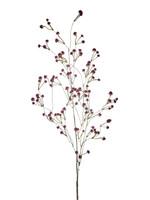 Goodwill Zijden bloemen GISPKRUIT donker rood