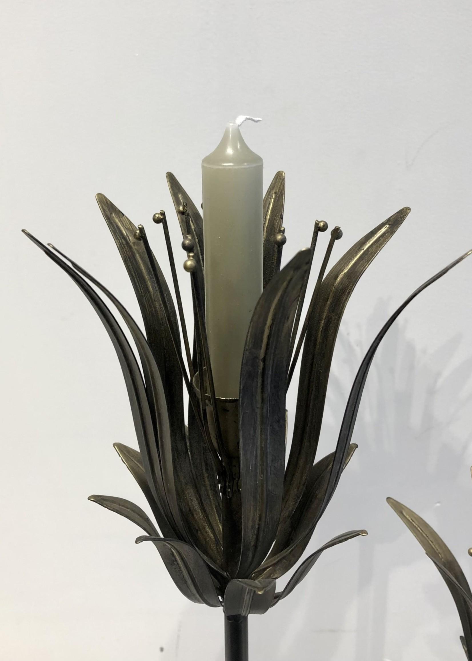 Rustik Lys Pakje van 6 kaarsjes 2x12 cm Eucalyptus