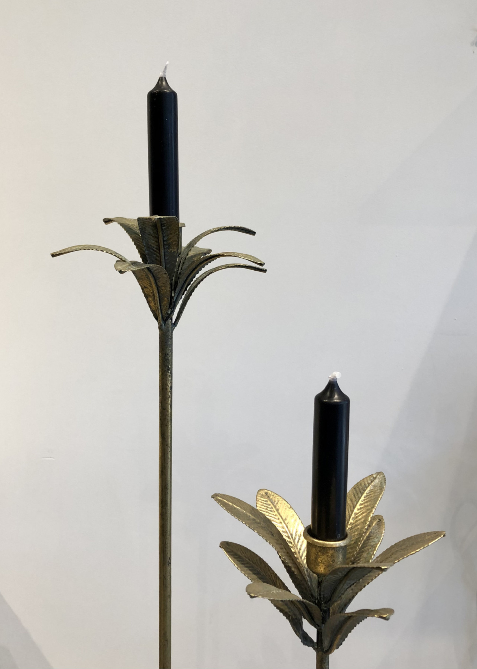 Rustik Lys Pakje van 6 kaarsjes 2x12 cm Zwart