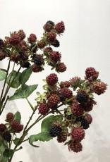 Wauw Zijden bloemen BRAMEN tak 78cm