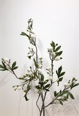 Wauw Zijden bloemen MIMOSA creme 100cm