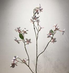 Wauw Zijden bloemen BRUIDSBLOEM