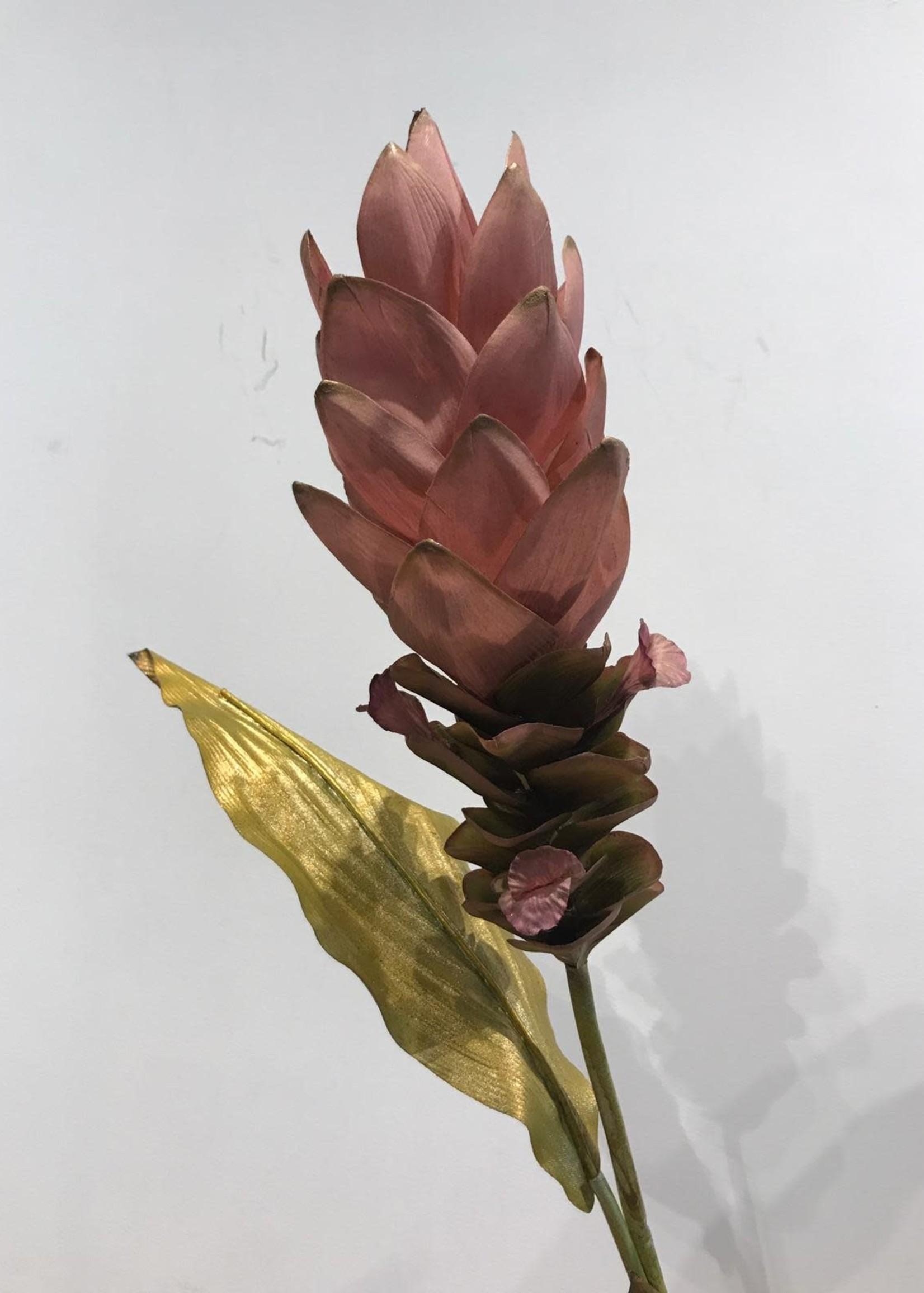 Goodwill Zijden bloemen GEMBERBLOEM 92 cm