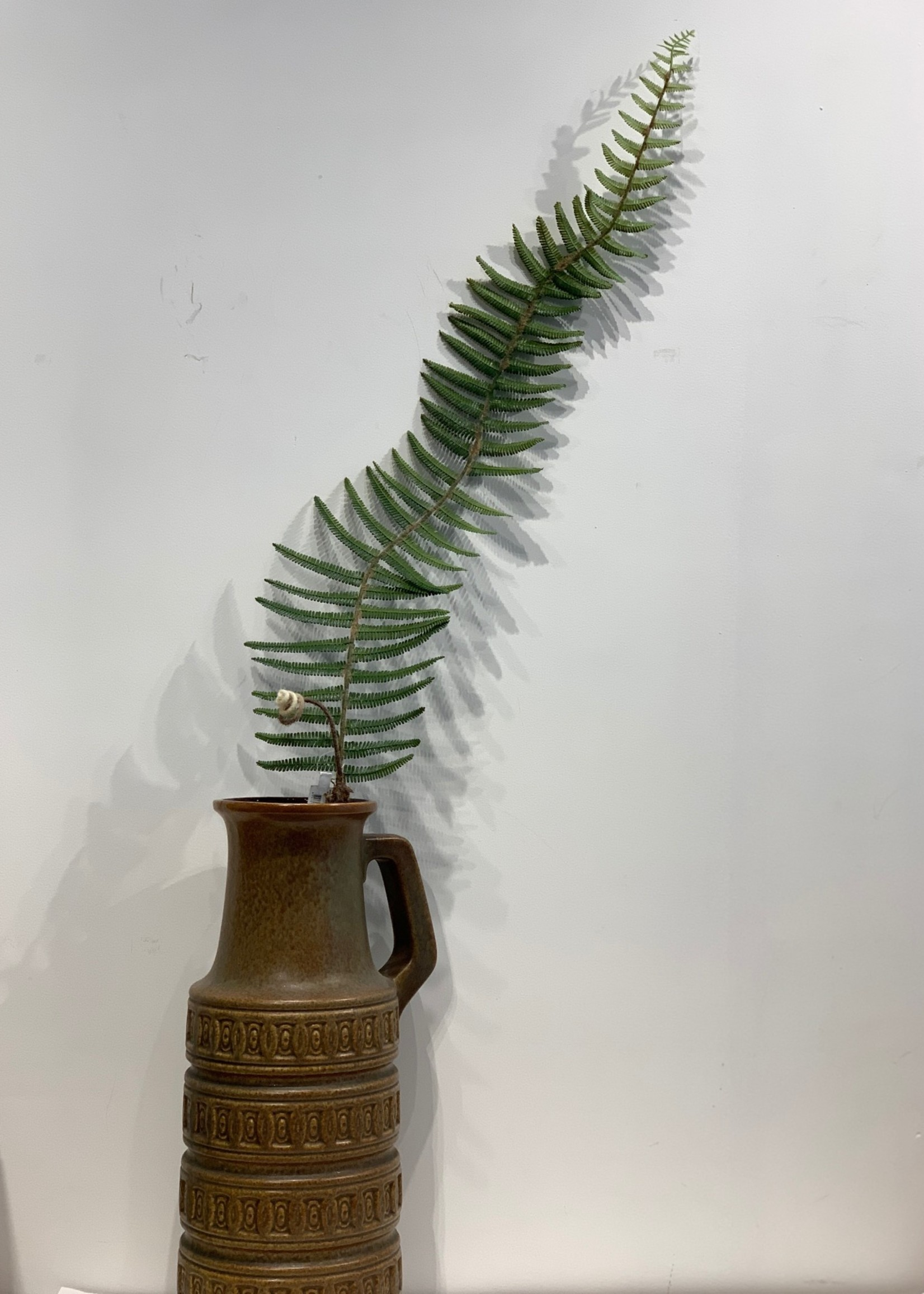 Zijden bloemen tak met varen blad 150 cm