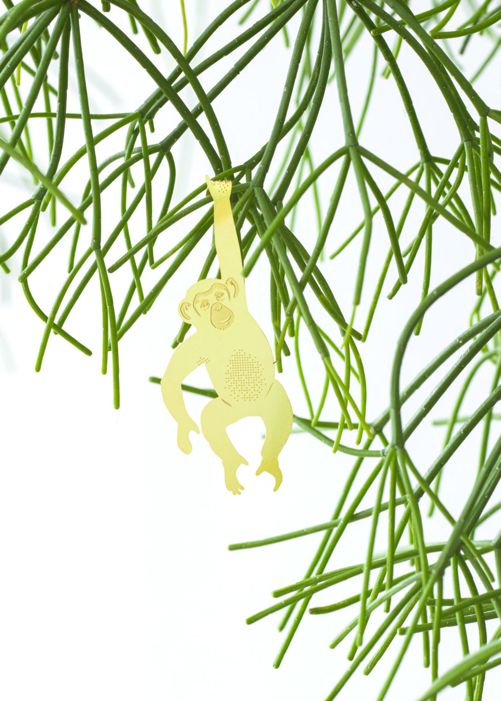 A.S Plant Animal CHIMPANSEE