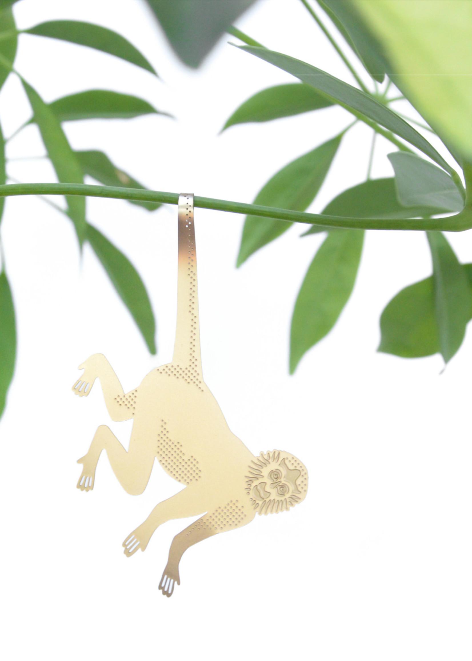 A.S Plant Animal SLINGER AAP spider monkey