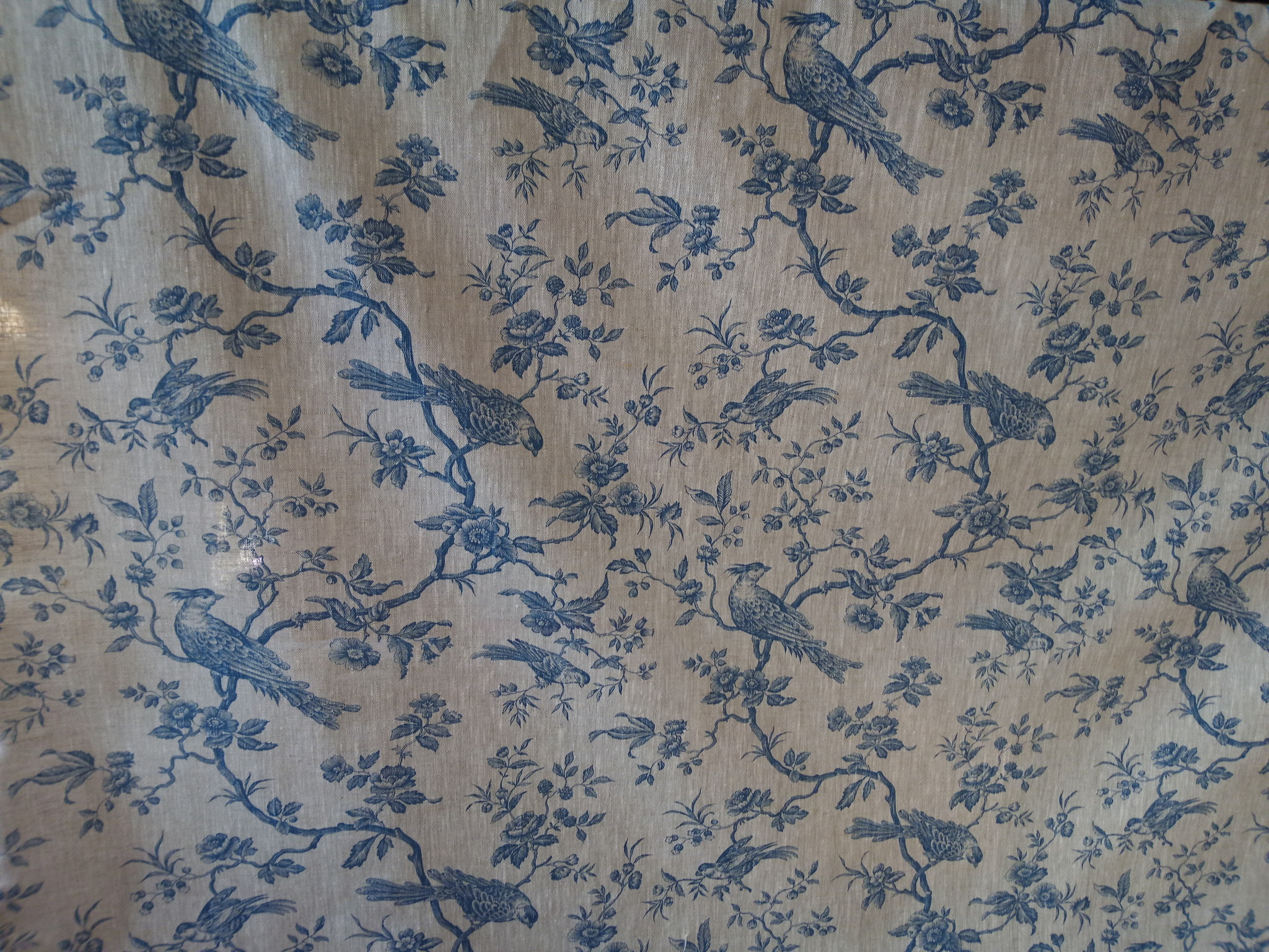 "Blue titmouse"" fabric"