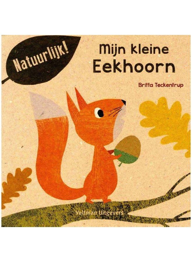 """Kinderboek """"Mijn kleine Eekhoorn"""""""