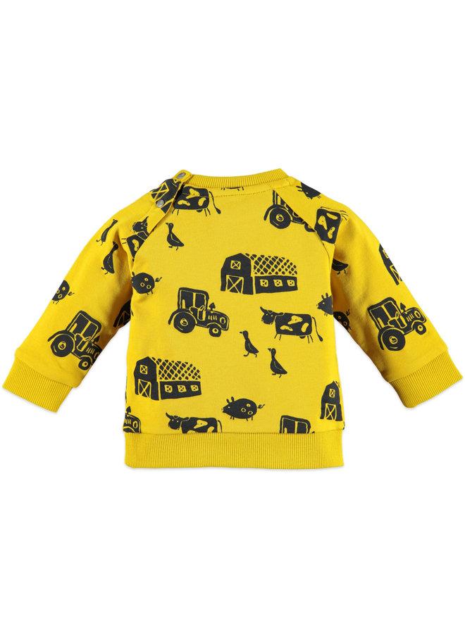 Baby Jongens sweatshirt