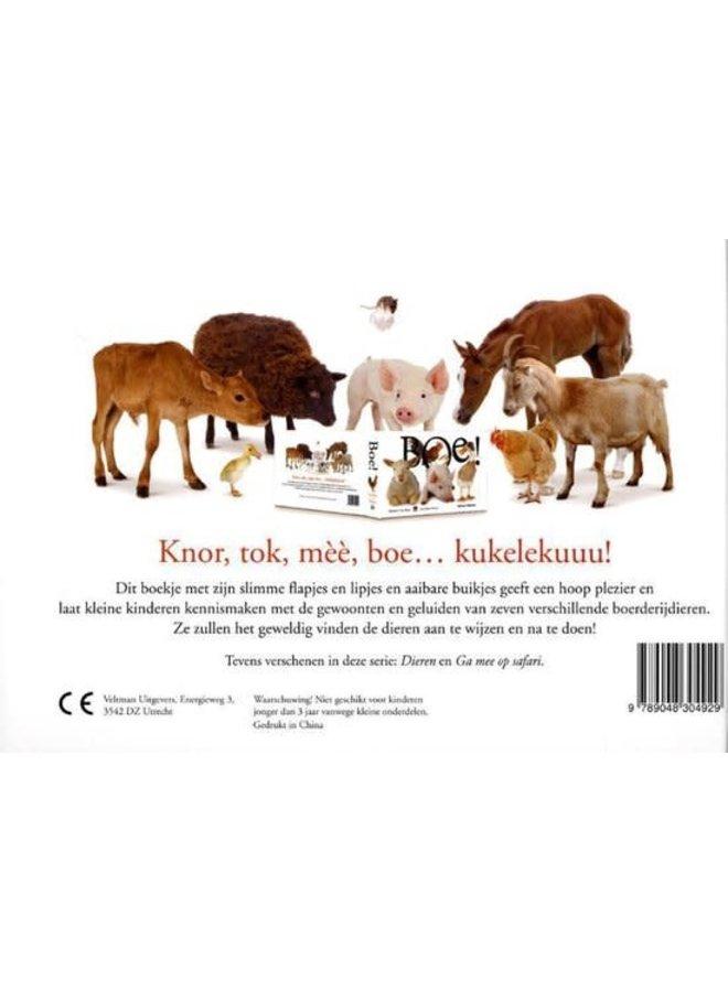 BOE! Kijk- en Voelboek