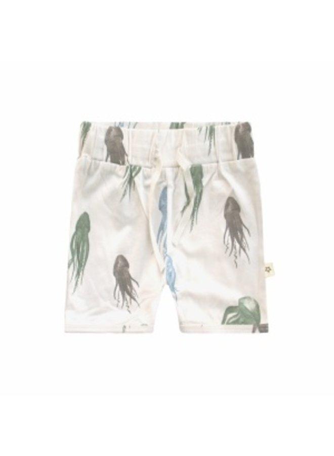 Jellyfish | Long Short