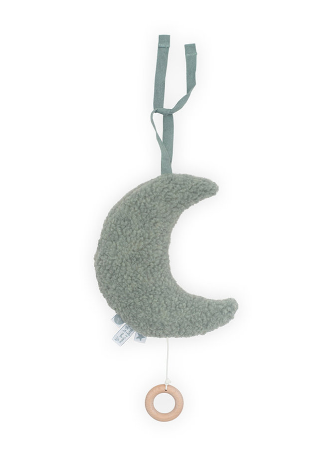 Muziekhanger Moon - Ash Green