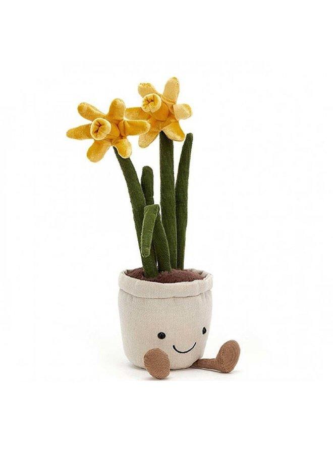 Amuseable Daffodil