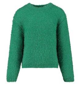 CKS trui Grassgreen