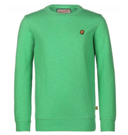 Petrol Industries Petrol sweater Champion Green