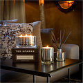 TED SPARKS - Diffuser - Metallic Collection - Silver