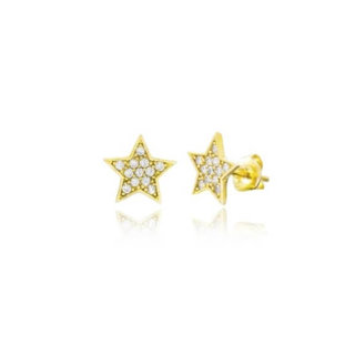 Shining star studs - goldplated