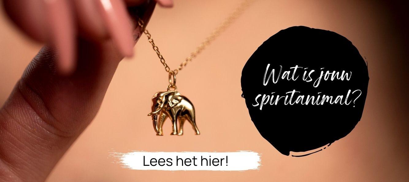 Wat is jouw spirit animal? | My Unique Style