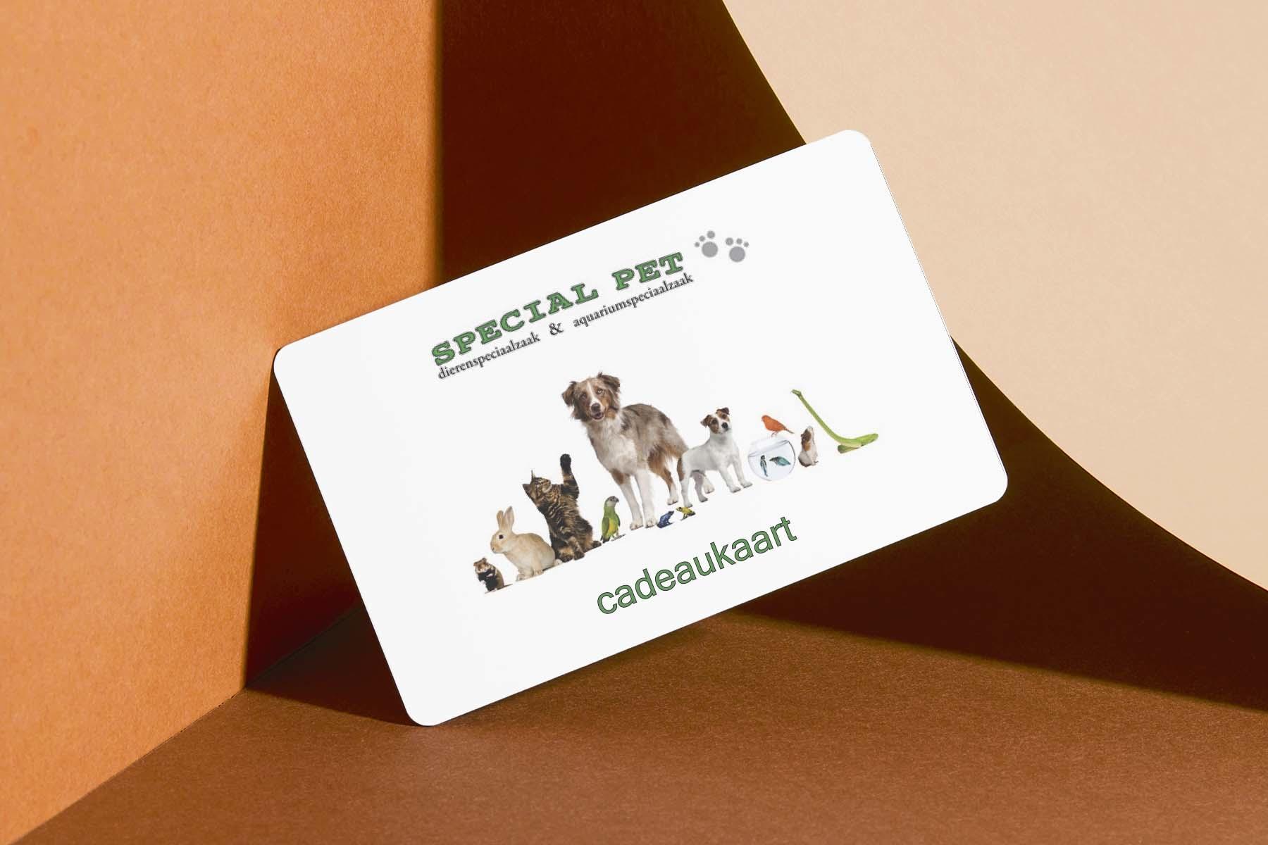 Special Pet-2