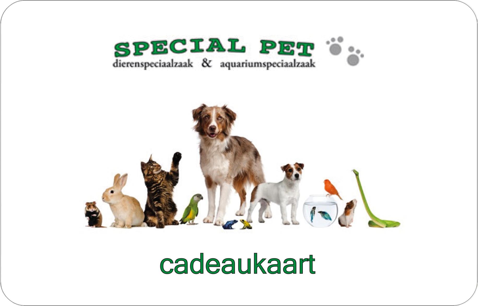 Special Pet-1