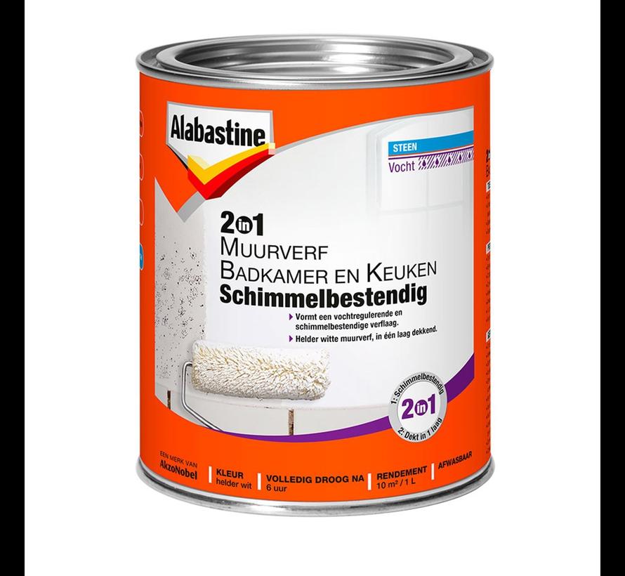 2in1 Muurverf Badkamer En Keuken