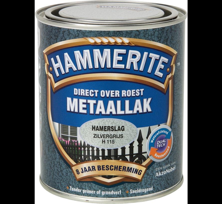 Metaallak Hamerslag Zilvergrijs