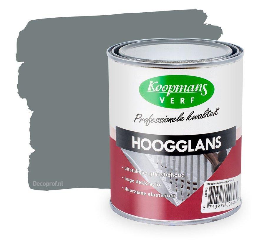 Hoogglans 305 Donkergrijs