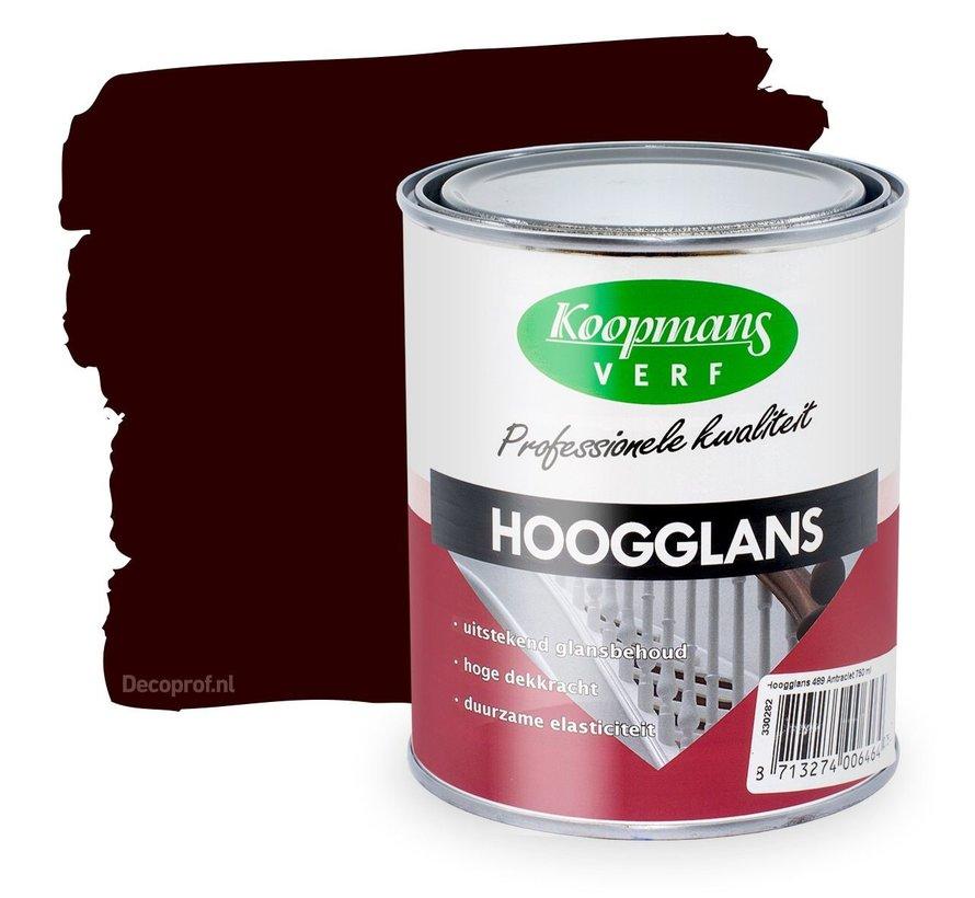 Hoogglans 543 Hulst