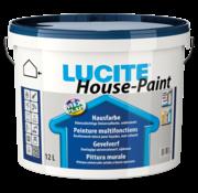 Lucite House-Paint