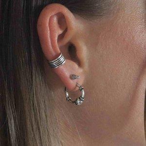 Zilveren oorknopjes Pointer