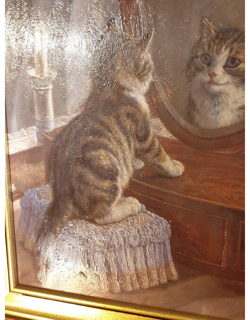 Nieuwsgierige poes kijkt naar haar spiegelbeeld
