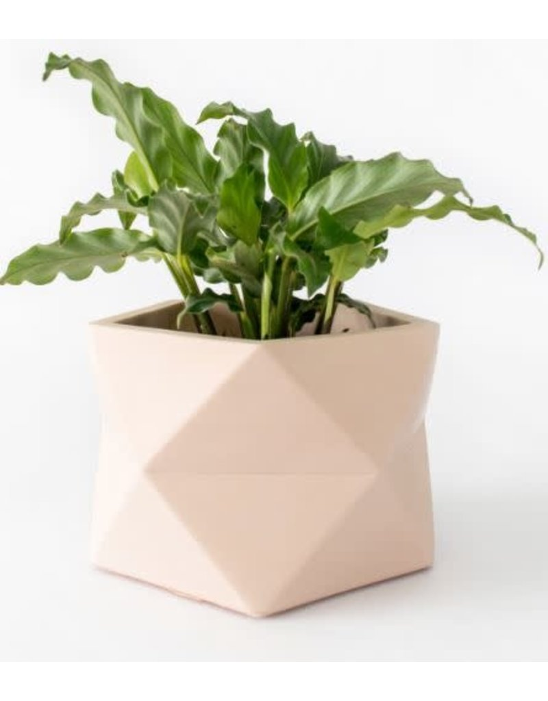 HOUSE RACCOON Palua Plantenpot – Large – Roze