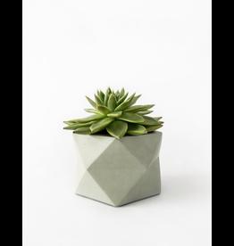 HOUSE RACCOON Palua Plantenpot – Large – Olive green