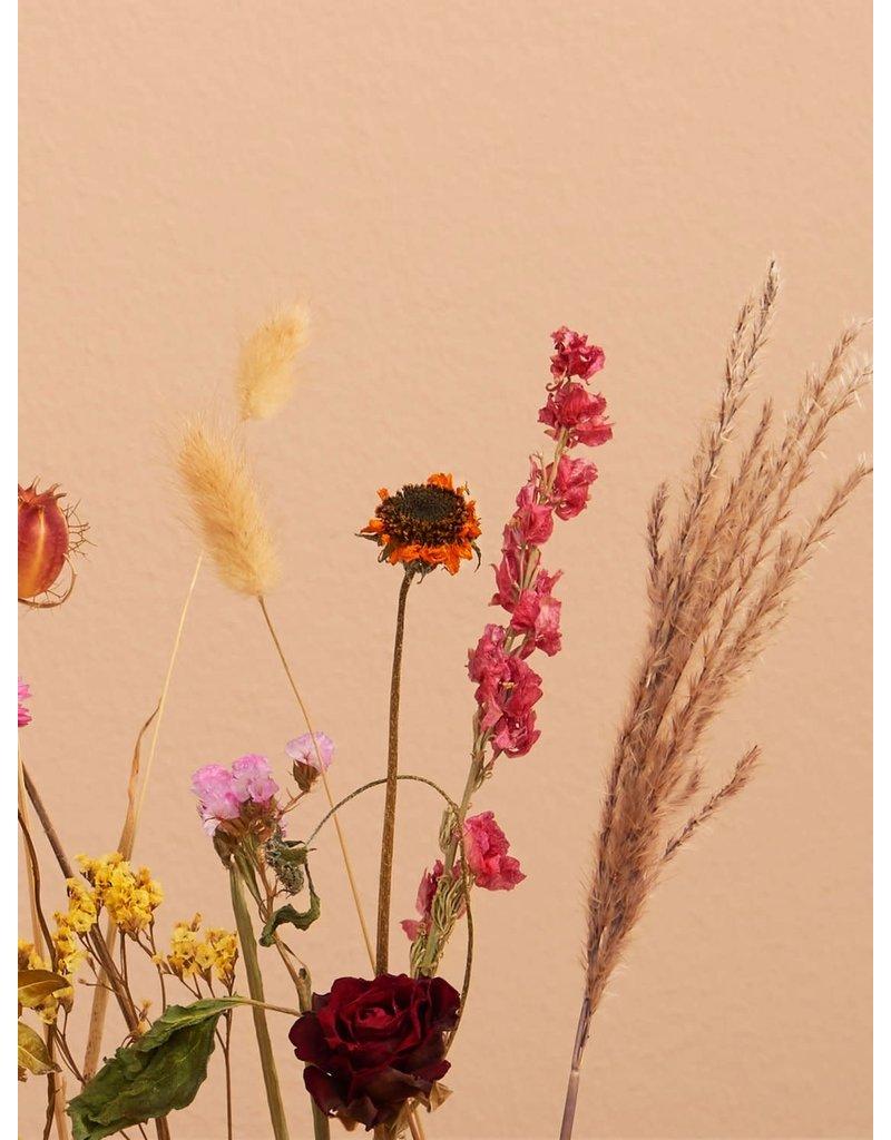 Bloomon Bloomon flowergram Indian summer