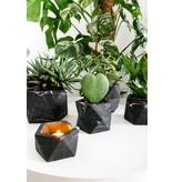 HOUSE RACCOON Palua Plantenpot – Large – Black marble