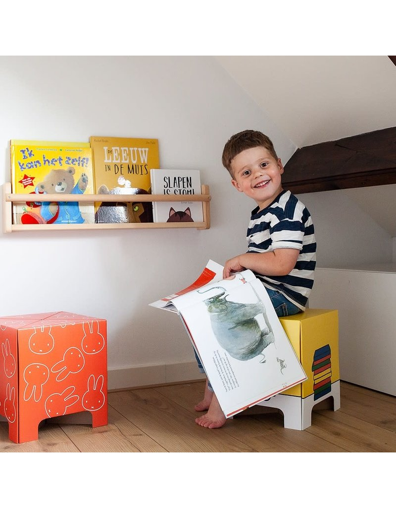 Mister Tody Kartonnen stoeltje - Nijntje - Yellow book