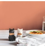 "Fisura ""cats"" - zout en peper set"