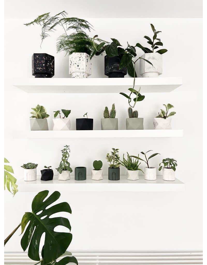 HOUSE RACCOON Emilia Planter - Sandy Beige Ø 6 cm