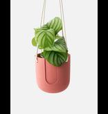 HOUSE RACCOON Nelson Hanging Planter - Pomegranate Ø 15 cm