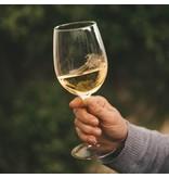 Oneglass Wine Oneglass - Pinot Grigio Terre Siciliane  IGT - 100 ml