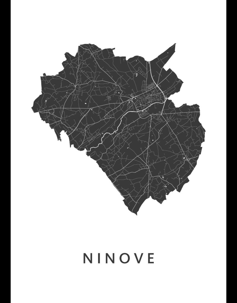 Kunst in kaart Kader 'Ninove'