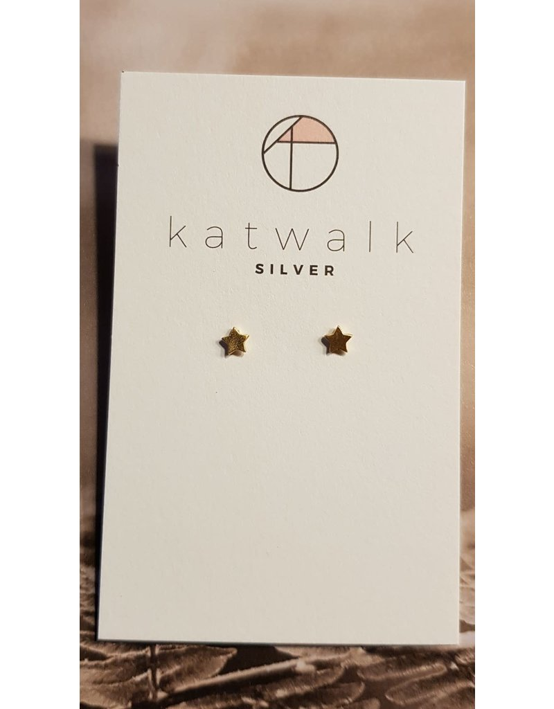 Katwalk Zilver Verguld zilver oorstekers - sterretjes