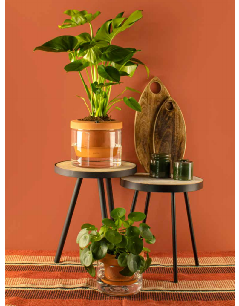 Gusta TerraCotcha plantenpot ø18,5cm